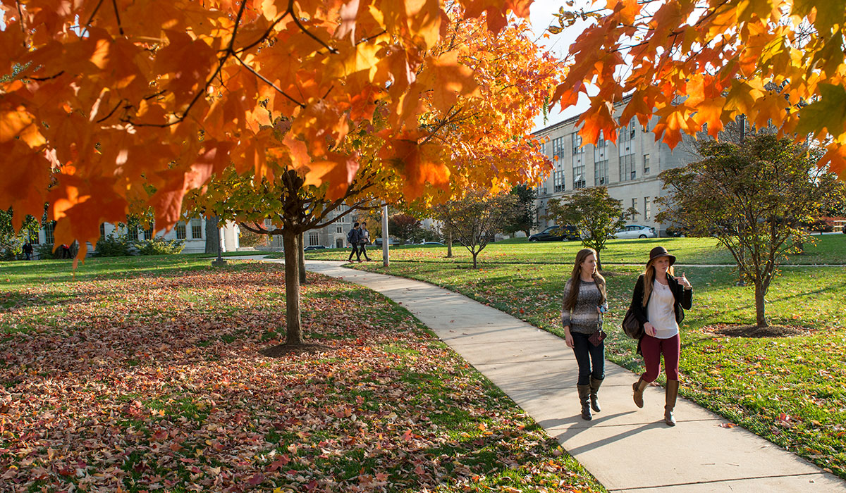 Students walking during Fall